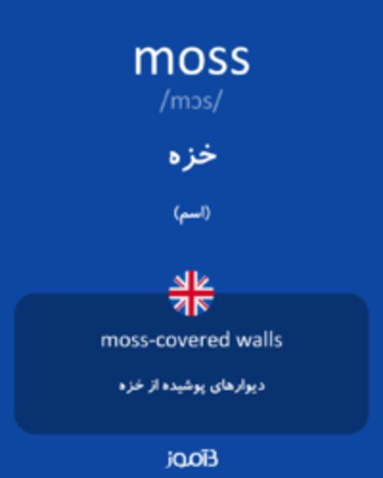 تصویر moss - دیکشنری انگلیسی بیاموز
