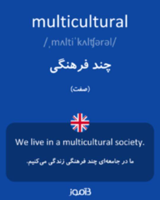 تصویر multicultural - دیکشنری انگلیسی بیاموز