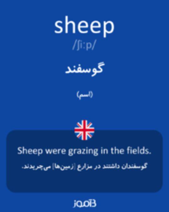 تصویر sheep - دیکشنری انگلیسی بیاموز