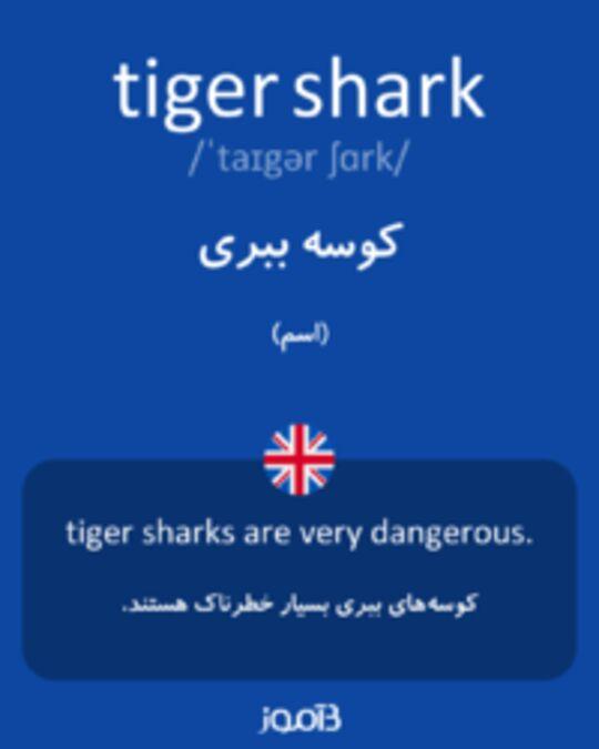 تصویر tiger shark - دیکشنری انگلیسی بیاموز