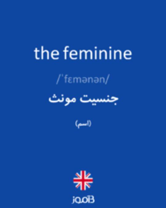 تصویر the feminine - دیکشنری انگلیسی بیاموز