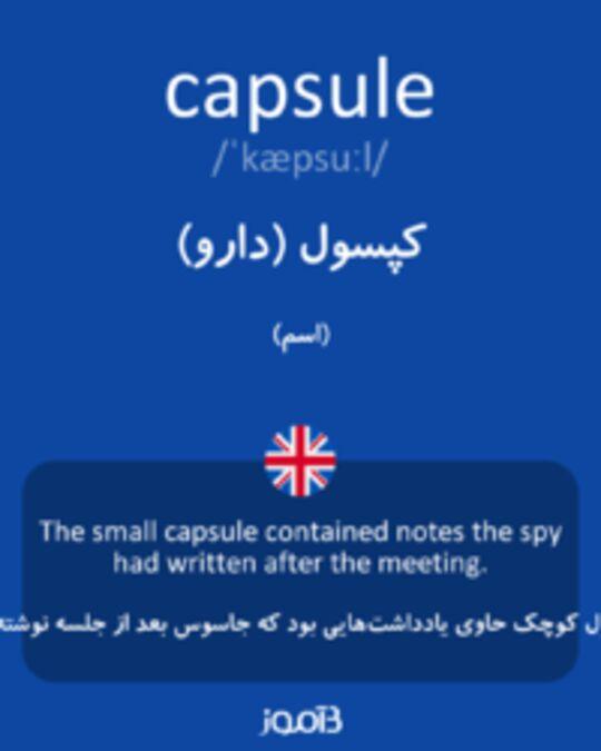 تصویر capsule - دیکشنری انگلیسی بیاموز