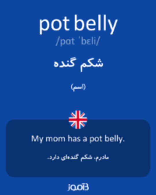 تصویر pot belly - دیکشنری انگلیسی بیاموز