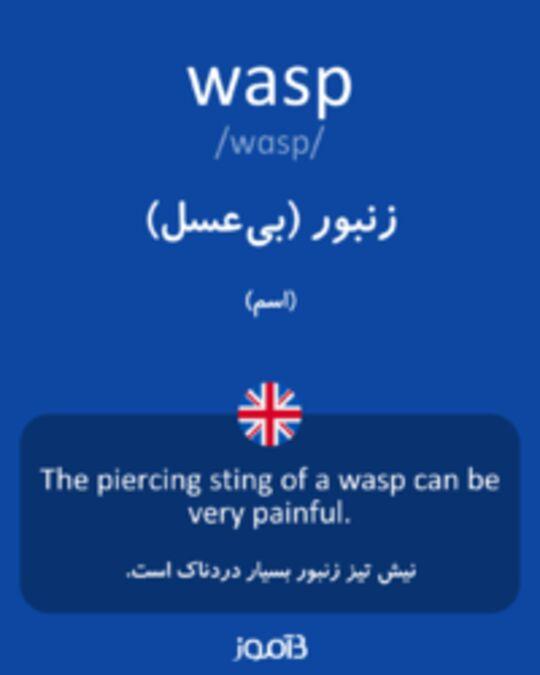 تصویر wasp - دیکشنری انگلیسی بیاموز