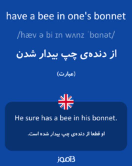 تصویر have a bee in one's bonnet - دیکشنری انگلیسی بیاموز