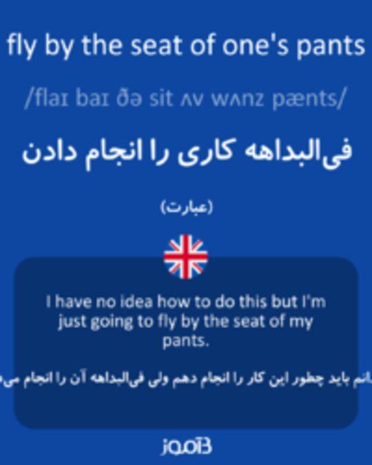 تصویر fly by the seat of one's pants - دیکشنری انگلیسی بیاموز