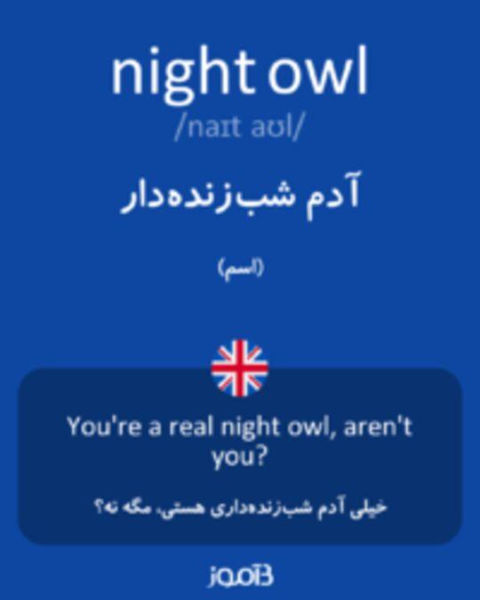 تصویر night owl - دیکشنری انگلیسی بیاموز