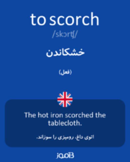 تصویر to scorch - دیکشنری انگلیسی بیاموز