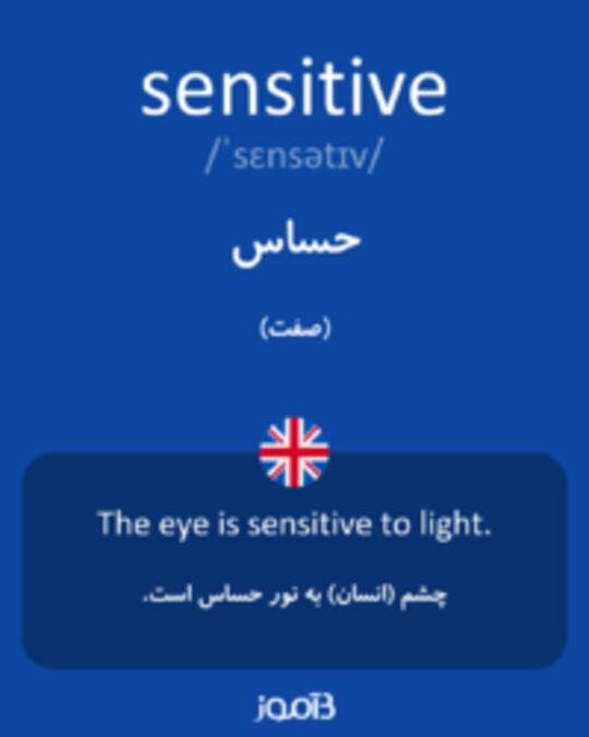 تصویر sensitive - دیکشنری انگلیسی بیاموز