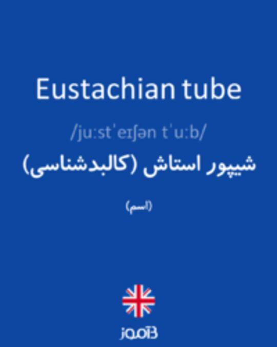 تصویر Eustachian tube - دیکشنری انگلیسی بیاموز
