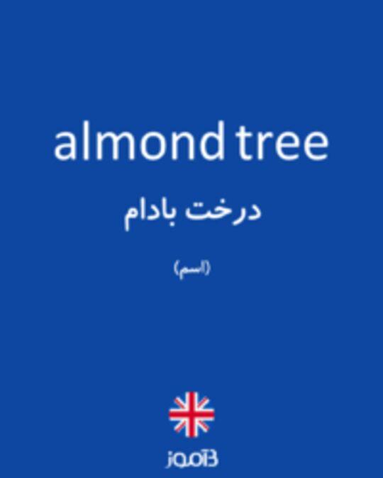 تصویر almond tree - دیکشنری انگلیسی بیاموز