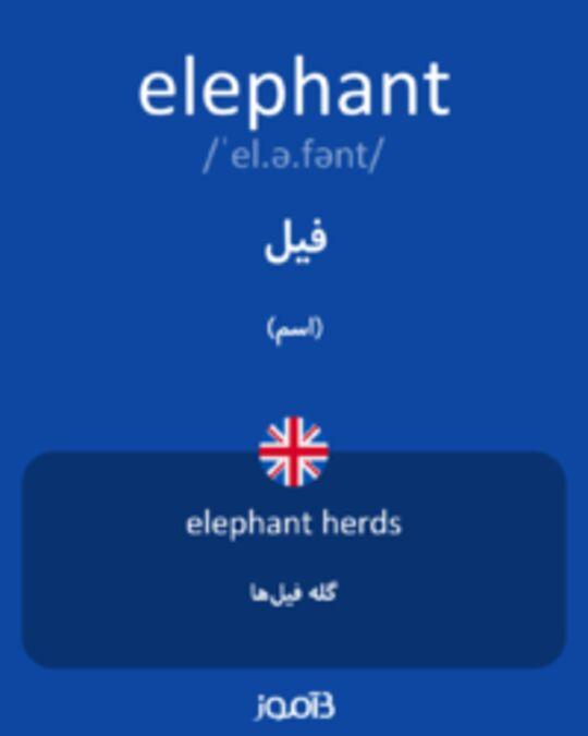 تصویر elephant - دیکشنری انگلیسی بیاموز
