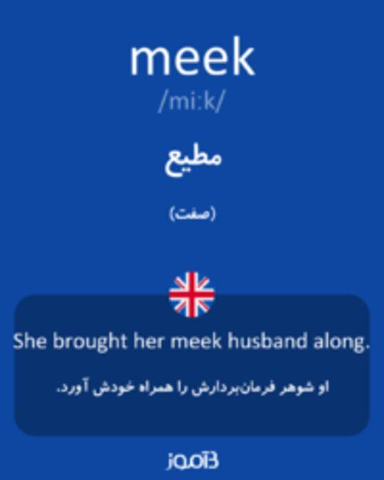 تصویر meek - دیکشنری انگلیسی بیاموز