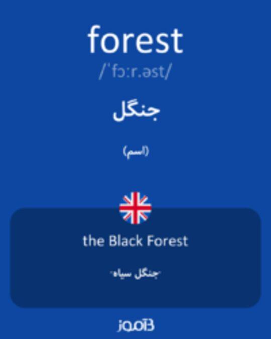 تصویر forest - دیکشنری انگلیسی بیاموز