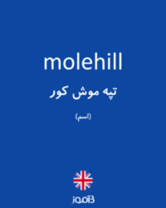 تصویر molehill - دیکشنری انگلیسی بیاموز