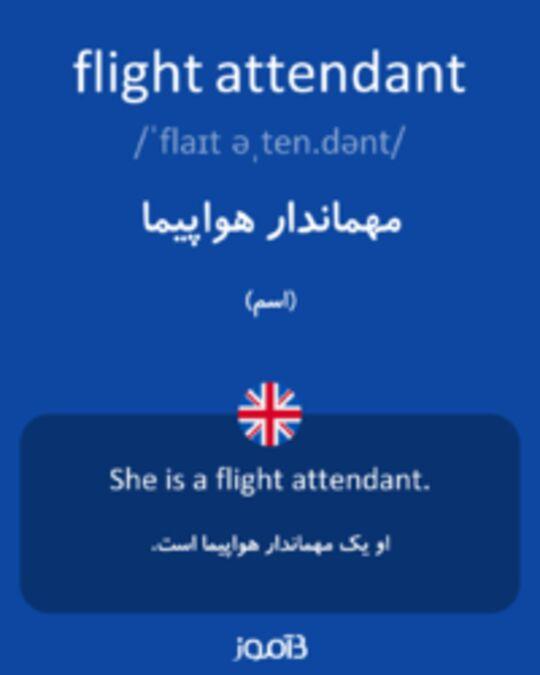 تصویر flight attendant - دیکشنری انگلیسی بیاموز