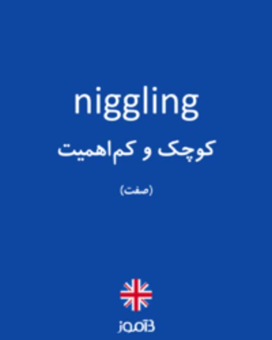 تصویر niggling - دیکشنری انگلیسی بیاموز