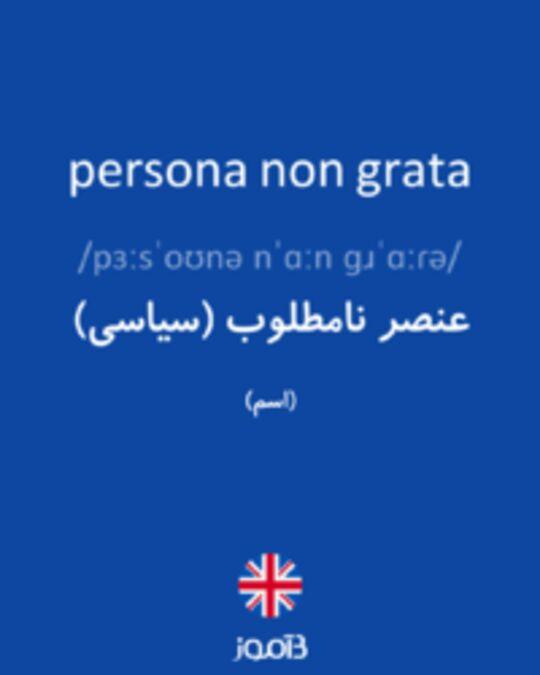تصویر persona non grata - دیکشنری انگلیسی بیاموز