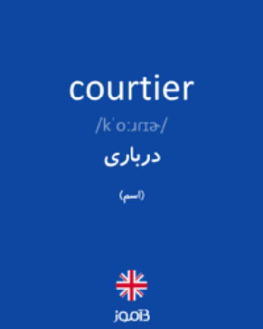 تصویر courtier - دیکشنری انگلیسی بیاموز