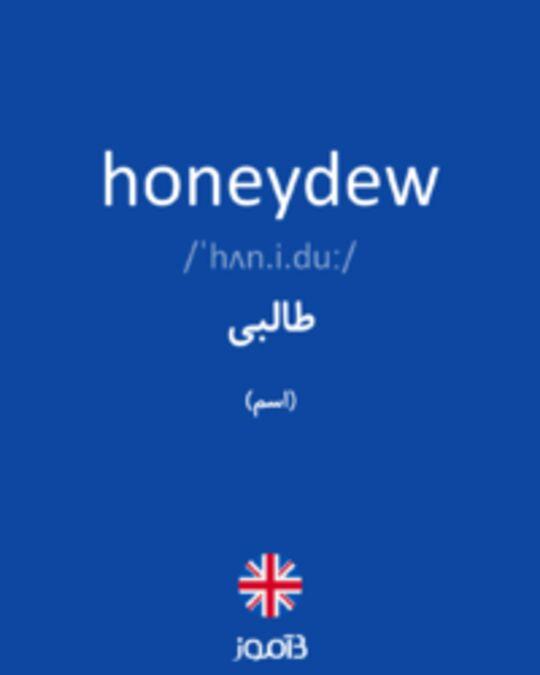 تصویر honeydew - دیکشنری انگلیسی بیاموز
