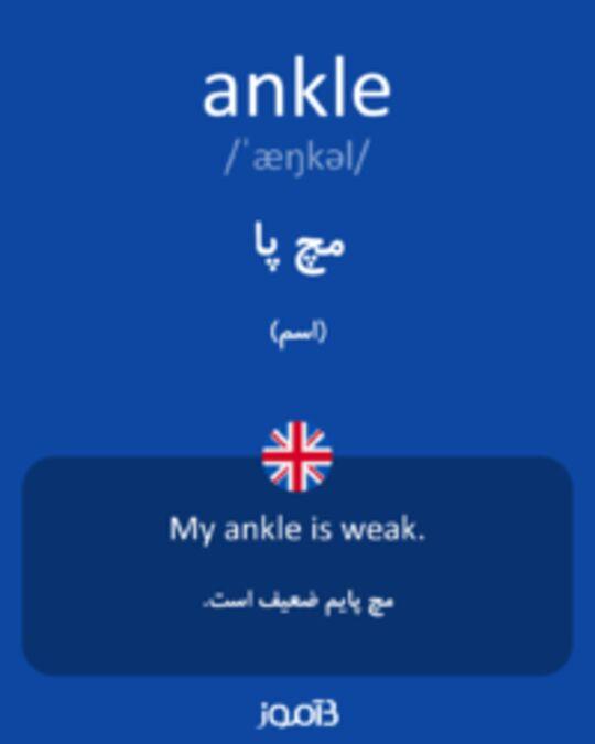 تصویر ankle - دیکشنری انگلیسی بیاموز