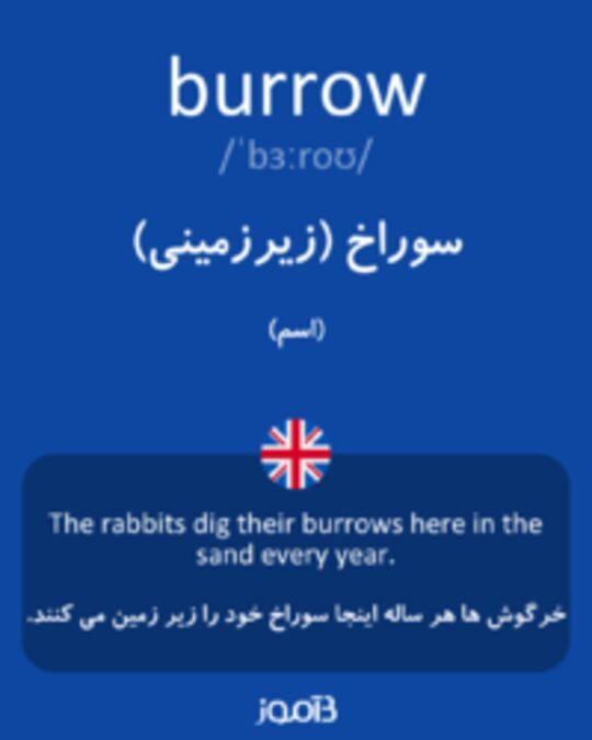 تصویر burrow - دیکشنری انگلیسی بیاموز