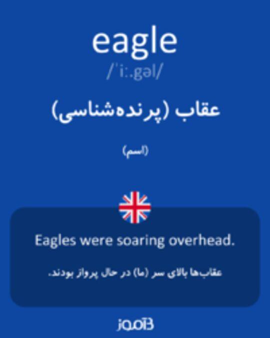 تصویر eagle - دیکشنری انگلیسی بیاموز
