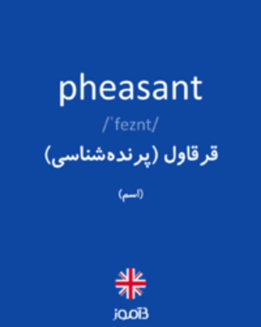 تصویر pheasant - دیکشنری انگلیسی بیاموز