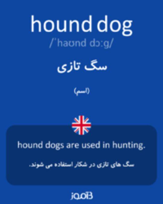 تصویر hound dog - دیکشنری انگلیسی بیاموز