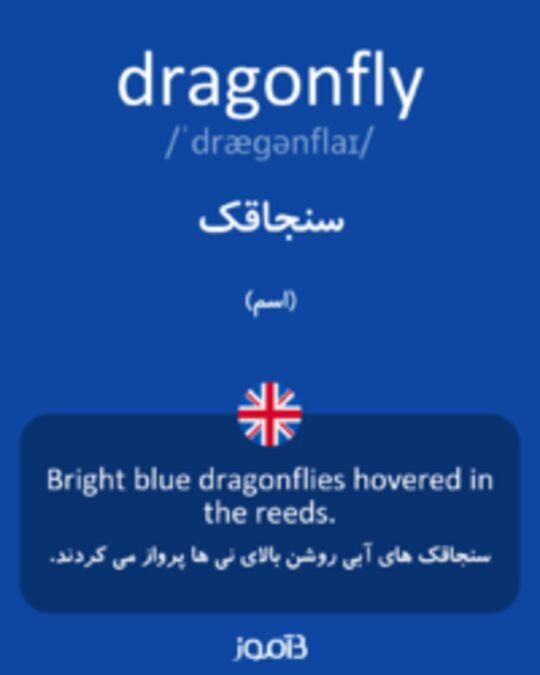 تصویر dragonfly - دیکشنری انگلیسی بیاموز