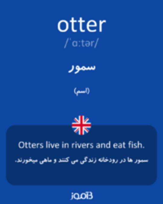 تصویر otter - دیکشنری انگلیسی بیاموز