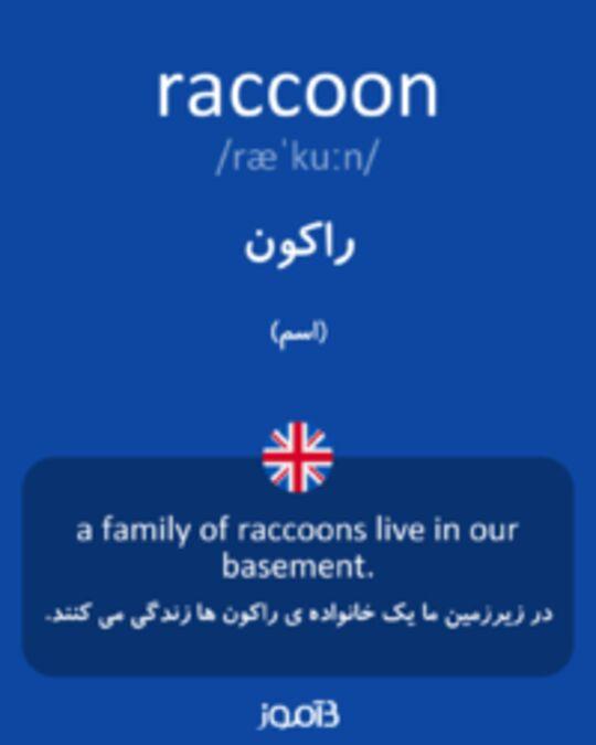 تصویر raccoon - دیکشنری انگلیسی بیاموز