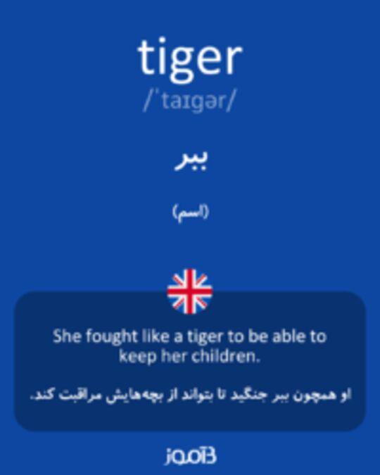 تصویر tiger - دیکشنری انگلیسی بیاموز