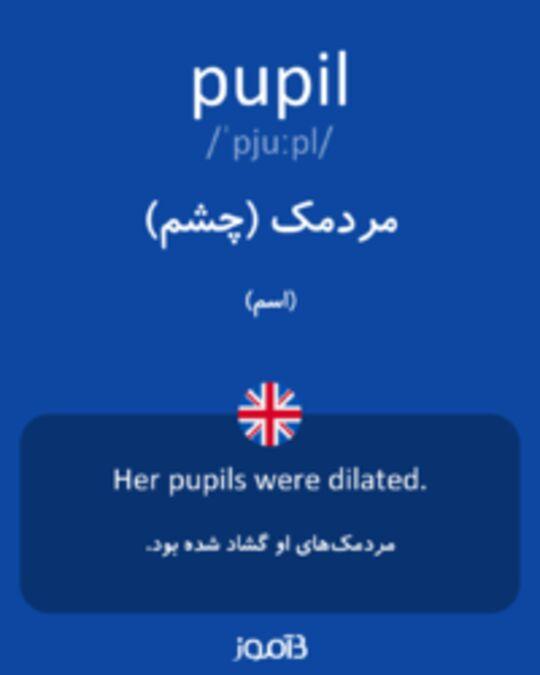 تصویر pupil - دیکشنری انگلیسی بیاموز