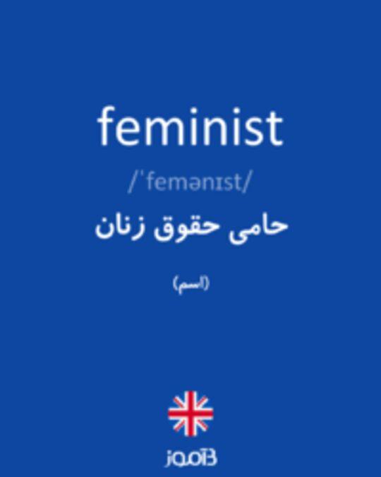 تصویر feminist - دیکشنری انگلیسی بیاموز
