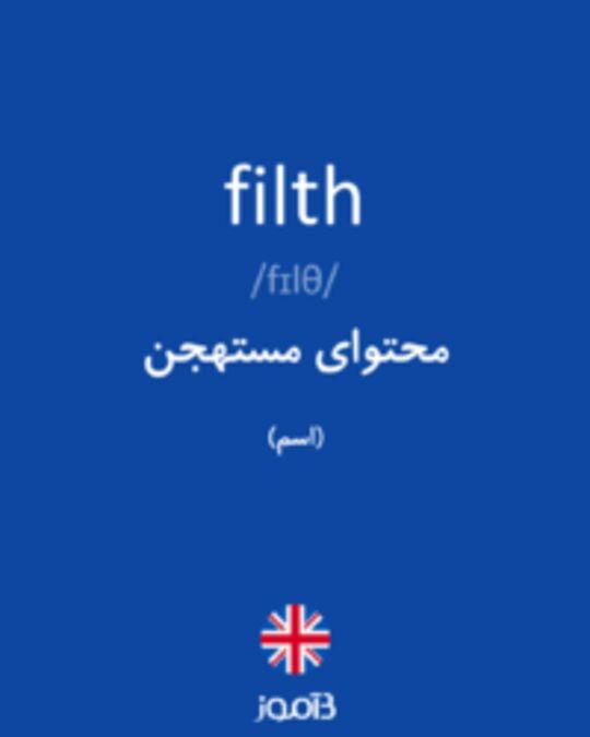 تصویر filth - دیکشنری انگلیسی بیاموز