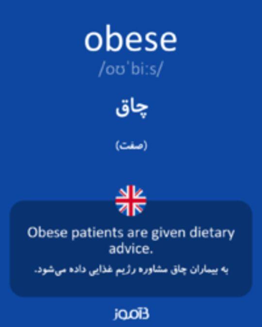 تصویر obese - دیکشنری انگلیسی بیاموز