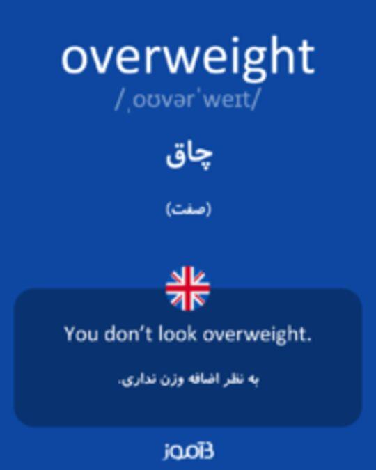 تصویر overweight - دیکشنری انگلیسی بیاموز