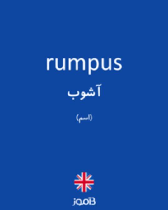 تصویر rumpus - دیکشنری انگلیسی بیاموز