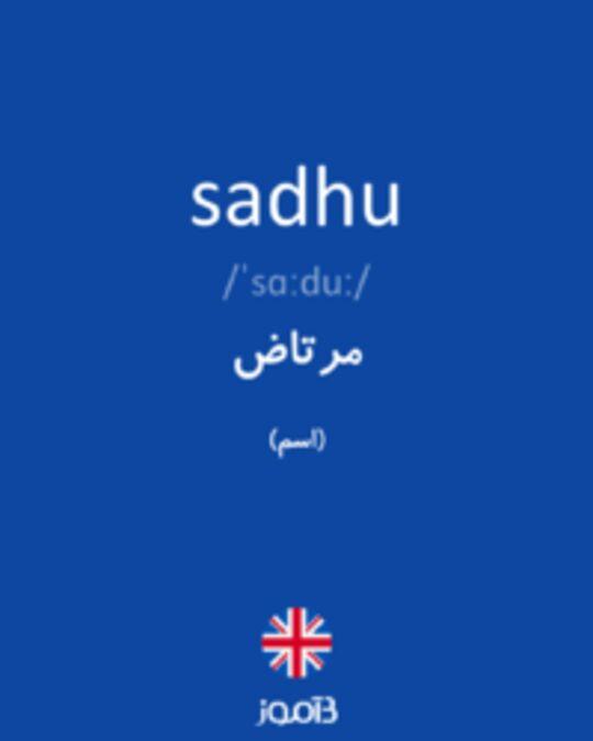 تصویر sadhu - دیکشنری انگلیسی بیاموز