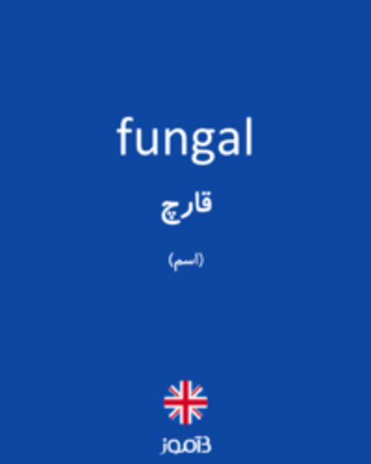 تصویر fungal - دیکشنری انگلیسی بیاموز