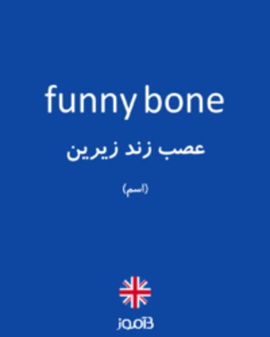 تصویر funny bone - دیکشنری انگلیسی بیاموز