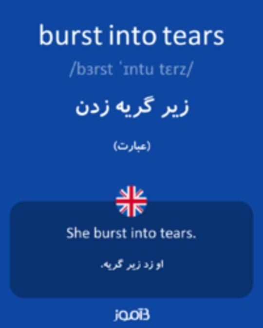 تصویر burst into tears - دیکشنری انگلیسی بیاموز