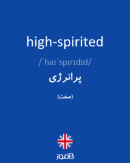 تصویر high-spirited - دیکشنری انگلیسی بیاموز
