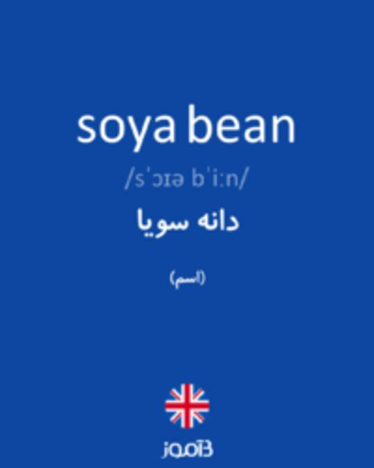 تصویر soya bean - دیکشنری انگلیسی بیاموز