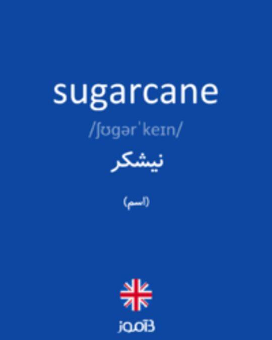 تصویر sugarcane - دیکشنری انگلیسی بیاموز