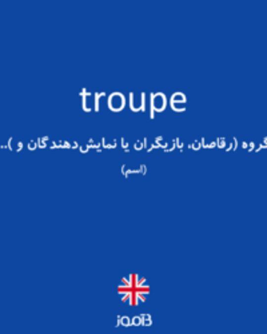 تصویر troupe - دیکشنری انگلیسی بیاموز