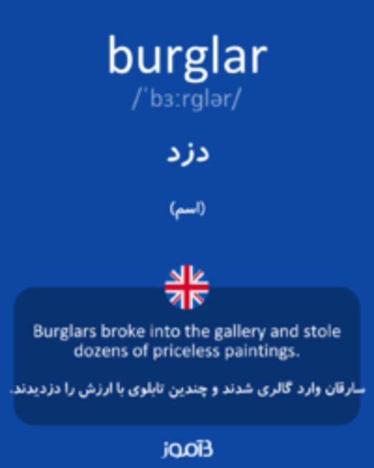 تصویر burglar - دیکشنری انگلیسی بیاموز