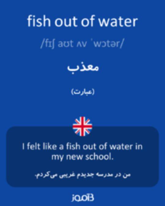 تصویر fish out of water - دیکشنری انگلیسی بیاموز