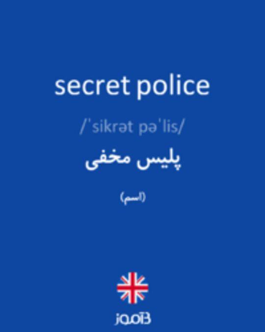 تصویر secret police - دیکشنری انگلیسی بیاموز
